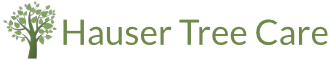 Hauser Tree Logo